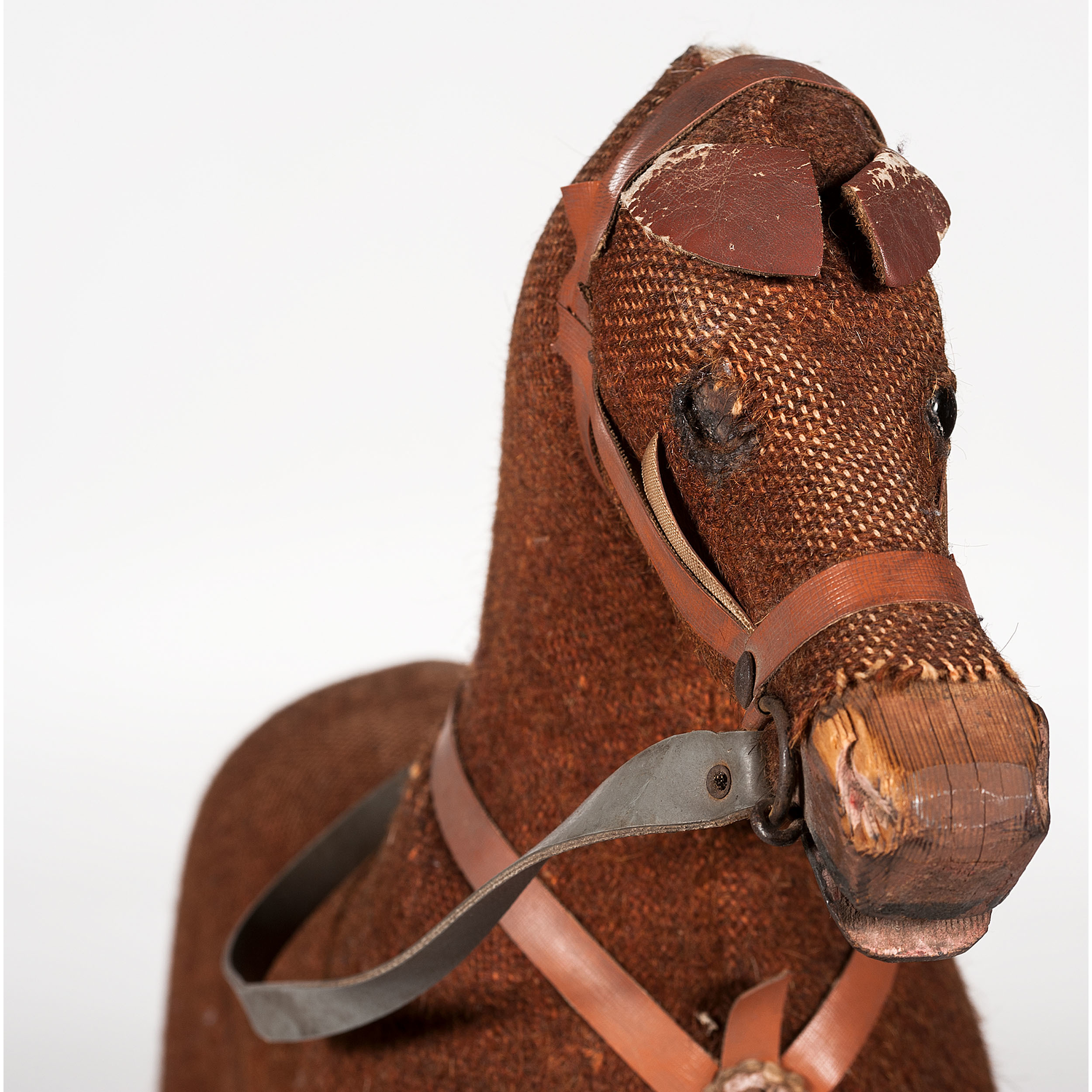 Students and staff to get on their horses for cancer ...  Hobby Horse House