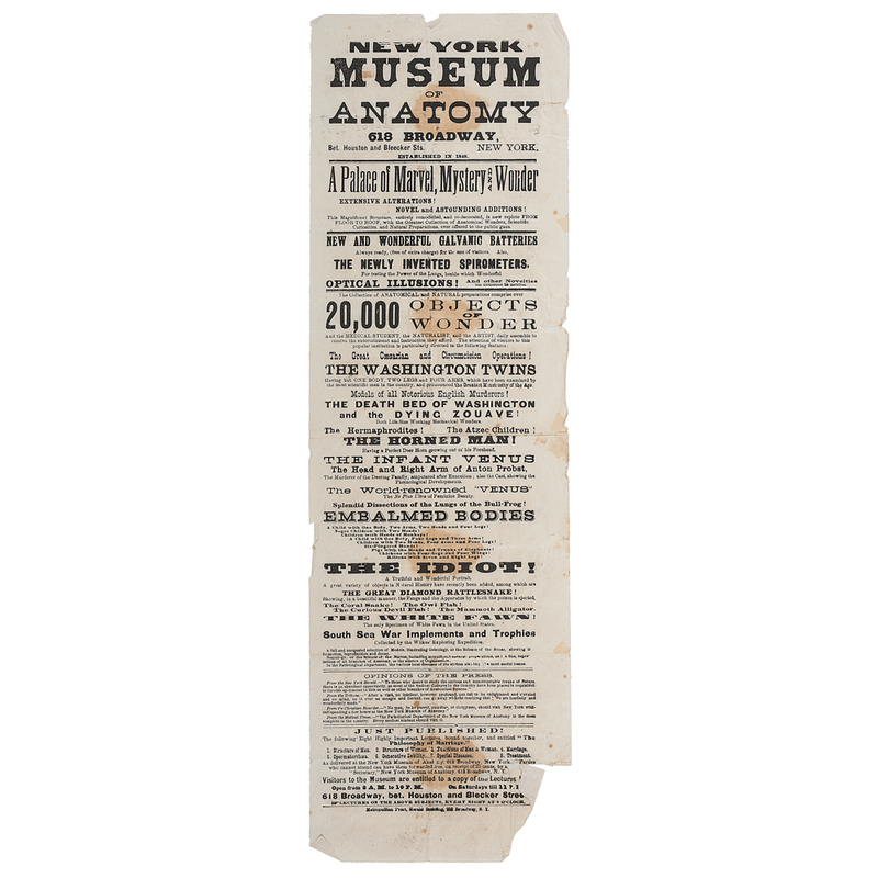 New York Museum of Anatomy Broadside   Cowan\'s Auction House: The ...