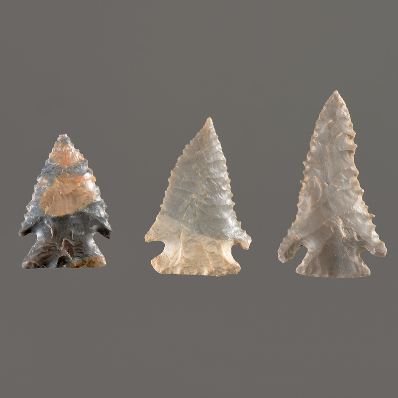 Three Pine Tree Points, Longest 2 in.