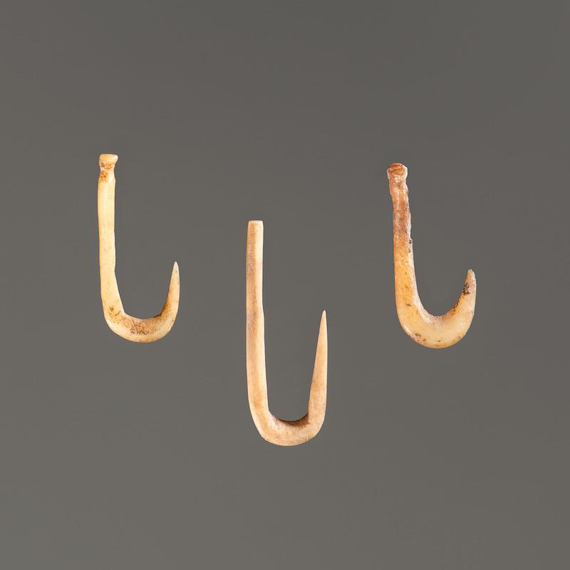 Three Bone Fish Hooks; Longest 1 in.