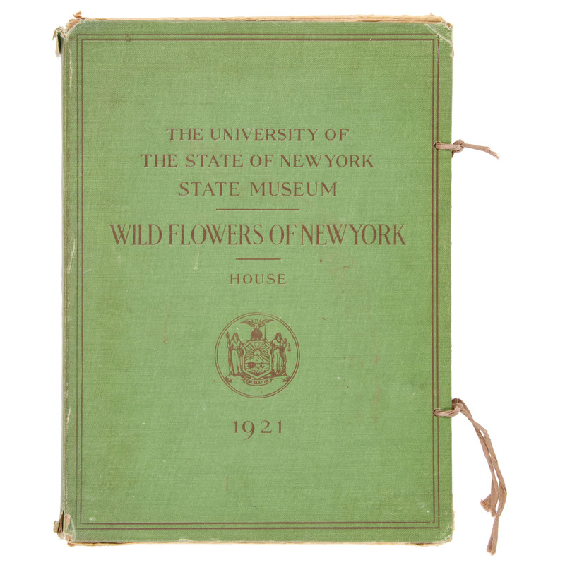[Botany - Horticulture - Gardening] Wild Flowers of New York, 1921 - Plate Volume with Over 260 Color Illustrations