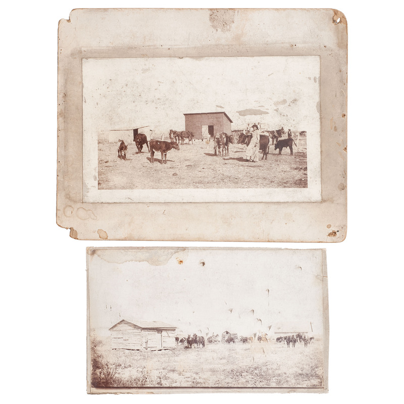 African Americans on the Ranch, Oversized Photographs by George F. Gibbs, circa 1900