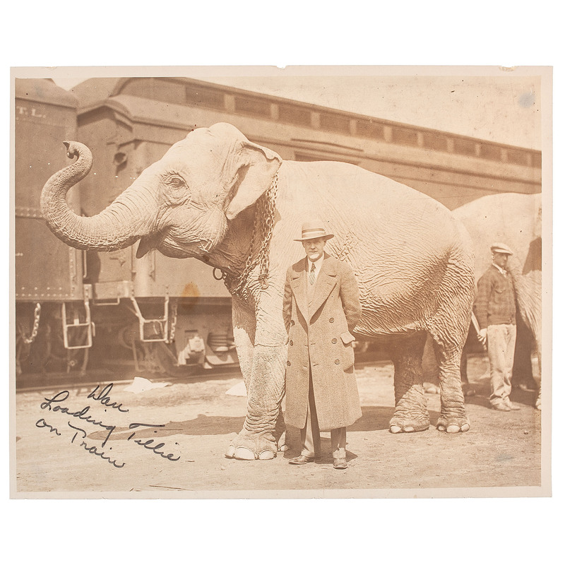 Dan Noonan, Circus Elephant Trainer, Photographic and Manuscript Collection