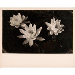 Doris Martha Weber (American, 1898-1984)