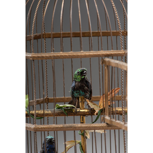 French Double Singing Bird Cage Automaton