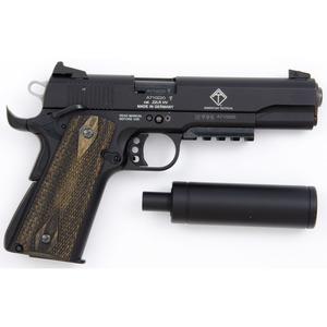 * GSG Model 1911 in Hard Shell Case