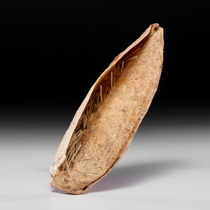 Plains Buffalo Bladder Quill Container