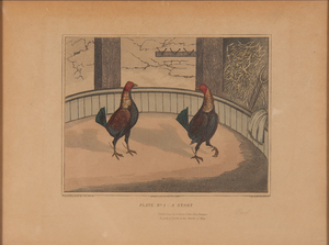 C. R. Stock Series of Cockfighting Hand-Colored Engravings