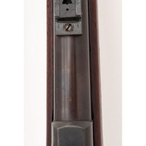 Springfield Model 1884 Rifle