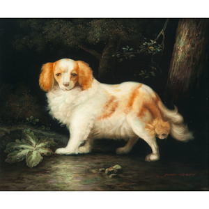 Portrait of a King Charles Spaniel After John Gray (English, active ca 1880-1904)