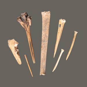 An Assortment of Bone Tools, Longest 8-1/2 in.