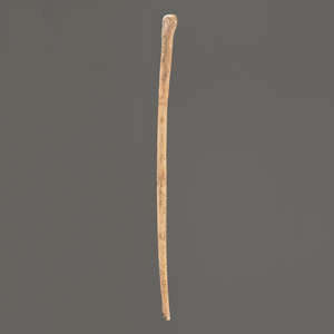 A Large Bone Pin, 10-3/4 in.