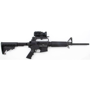* Bushmaster XM15-E2S Rifle