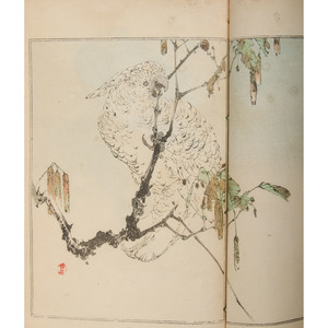 [Illustrated - Japan]  19th Century Japanese Woodblock Printed Books by Seitei; Plus Japanese Months: With Illustrations