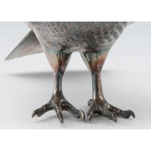 Persian Silver Dove
