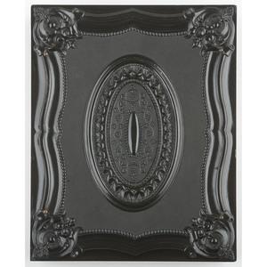 Rare Half Plate Union Case, American Country Life, Black [Berg 1-11/3-4]