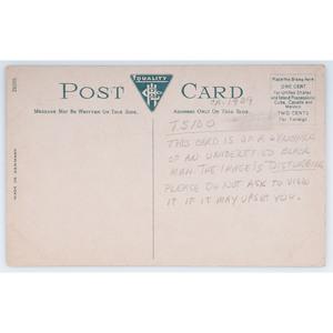 Early 20th Century African American Lynching Postcard