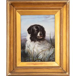 English School, Portrait of a Dog