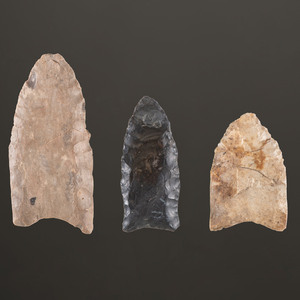 A Group of Small Clovis and Cumberland Points