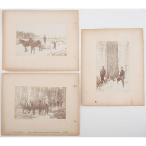 Logging in Bear Lake, Michigan, Series of Nine Photographs by Will Anderson