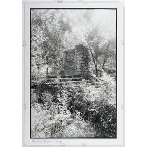 Contemporary Gelatin Silver Photographs