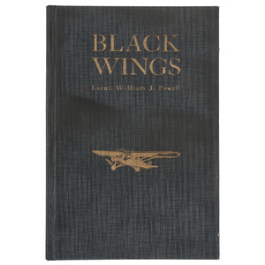Black Wings, Novel Promoting Aviation to African Americans