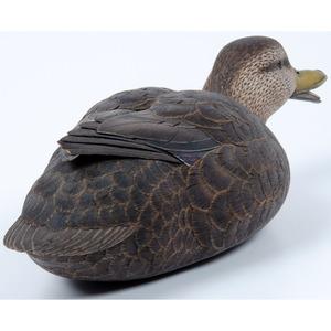 A Duck Decoy by Dan Cobb