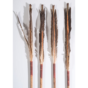 Bannock Sinew-Backed Bow with Arrows, Collected by General Herbert Everett Tutherly (1848-1921)