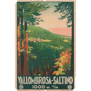 Vallombrosa~Saltino, Italy