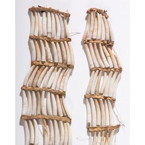 Plains Dentalium Shell Earrings, Collected by General Herbert Everett Tutherly (1848-1921)