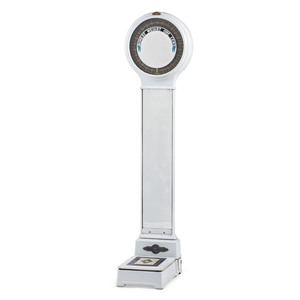 A Peerless Weighing Machine Company Porcelain and Iron Mirrored Scale