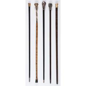 A Group of Walking Sticks