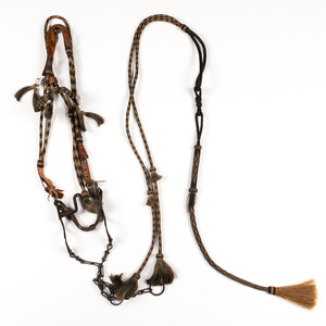Hitched Horsehair Bridle
