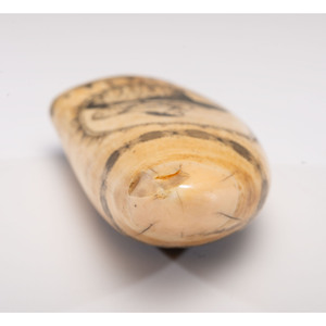 A Banknote Engraver Scrimshaw Whale's Tooth