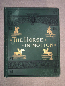 MUYBRIDGE THE HORSE IN MOTION 1882 1st EDITION