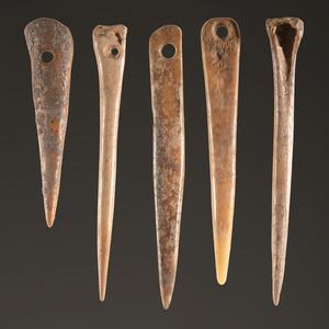 Five Bone Needles, Largest 3-1/2 in.