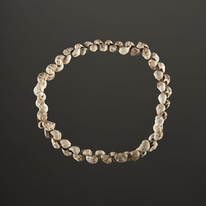 A Strand of 63 Shell Beads, 10-1/2 in.