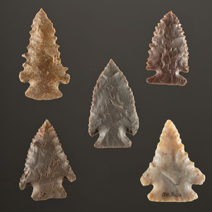 Five Pine Tree Points, Largest 2 in.