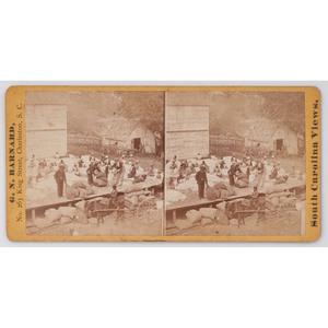 [AFRICAN AMERICANA] -- [RECONSTRUCTION]. Barnard, G.N., photographer. View of Laborers Preparing Cotton for Gins on Alex. Knox's Plantation, Mount Pleasant, Near Charleston, S.C. Charleston, SC, [ca 1870s].