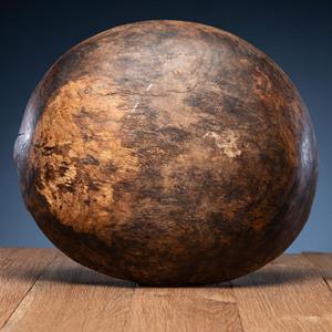 Eastern Woodlands Elm Burl Bowl