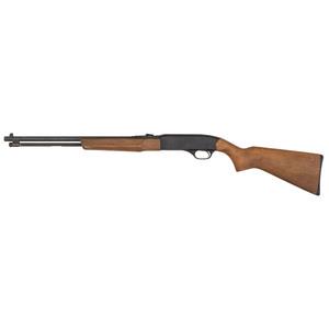 * Winchester Model 190 Carbine
