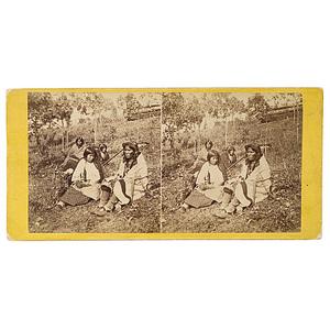 Joel E. Whitney Stereoview of A Chippewa Wedding,