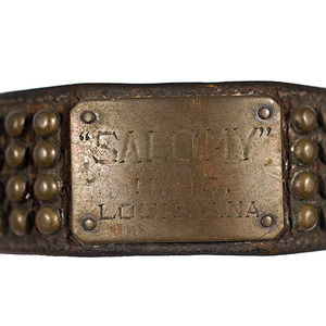 Early 20th-Century Atlantic Squadron Navy Mascot Dog Collar, from U.S.S. Louisiana,